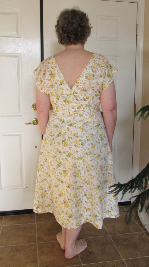 Back of the dress, showing the V neck